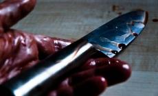 Zbog hektara zemlje: S leđa bratu prerezao grlo, pa isti nož zario sebi u vrat…