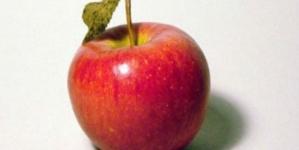 Dvodnevna dijeta s jabukama!