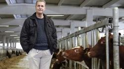 Pozitivna BiH: Norveške krave pokreću BIH