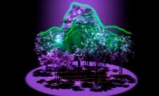 Međunarodna svemirska stanica će uskoro moći mjeriti gustinu šume pomoću lasera