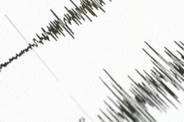 Očitavanje jačine zemljotresa - Telegraf.rs