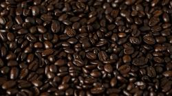 U kafi pronašli novi protein, jači od morfija