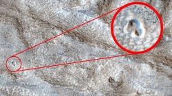 """""""Najbolji dokaz"""": Ogromna kupola na Marsu golica maštu naučnika"""