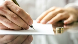 Čudni razlozi za razvod: Ženi papiga otkrila da je muž vara