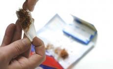 UIO BiH: Profitira crno tržište rezanog duhana