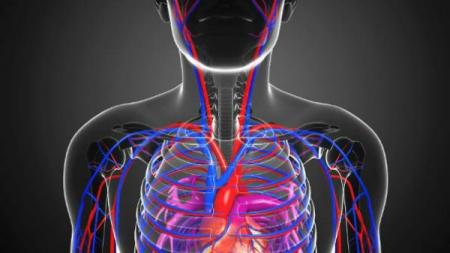 Ovih PET brojeva će otkriti da li je vaše srce zdravo