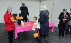 U Zenici dijeljeni narcisi kao simbol za borbu protiv raka dojke