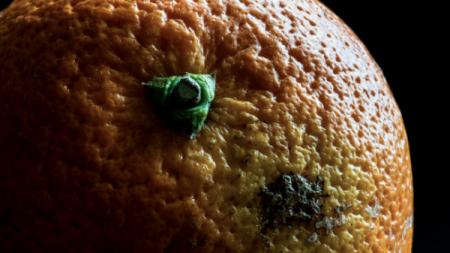 75 posto ljudi ne zna prepoznati rak kože. Šta trebate znati o tome