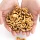 KORISNI ORASI: Šaka oraha dnevno smanjuje mogućnost raka debelog crijeva