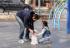 ZASTRAŠUJUĆE: Jeste li svjesni koliko je lako oteti dijete?