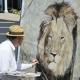 Zašto toliko tugujemo za lavom Cecilom, ali ne i za ljudskim žrtvama?