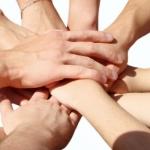 Zajedništvo - Novilist