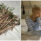 sokirani onkolozi slucajno otkrili ova trava moze da ubije rak za 48 sati