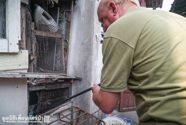 majmun-spasioci-tajland-foto-hefty-1460649970-886475