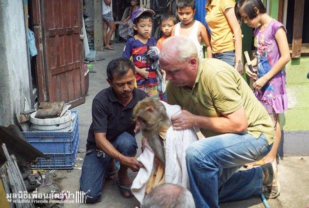 majmun-spasioci-tajland-foto-hefty-1460650373-886485