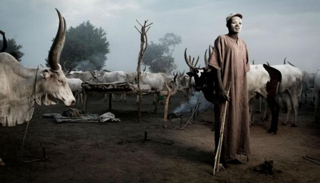 mundari-pleme-krave2-630x361