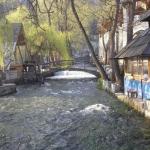 Plava voda Travnik - Pticica.com
