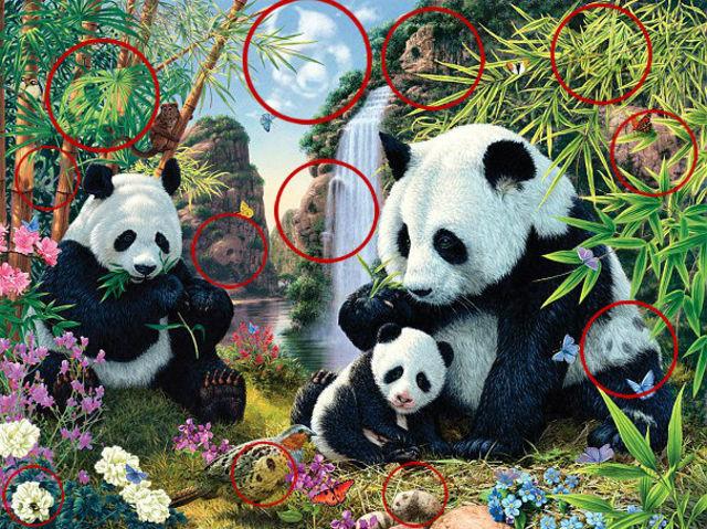 panda-test-2