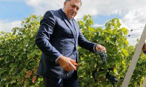 Milorad Dodik - Fokus