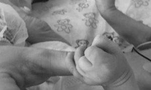 beba - Srbijadanas