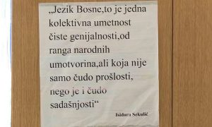 jezik Bosne - N1