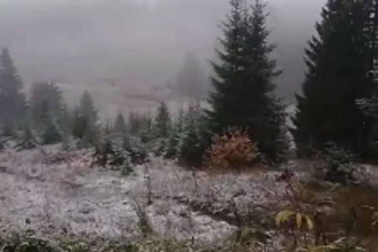 na vlasicu pao snijeg temperature osjetno nize