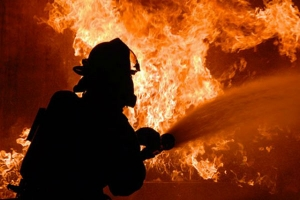 "Požar progutao fabriku peleta firme ""Smrča"""