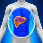 jeftina namirnica moze da oporavi cijelo tijelo obnavlja zuc jetru i stitnu zlijezdu iz korijena