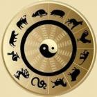 najtacniji horoskop na svijetu ono sto vam pise u kineskom horoskopu sigurno je tacno