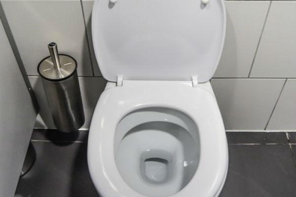 Kisanagijeva kuca WC-solja
