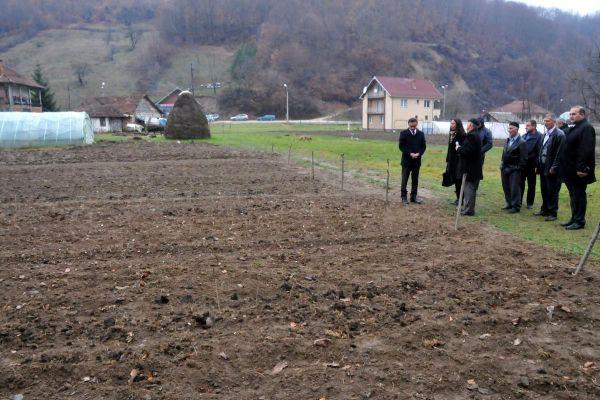 novi pazar tika donirala 76 300 sadnica malina za 46 domacinstava