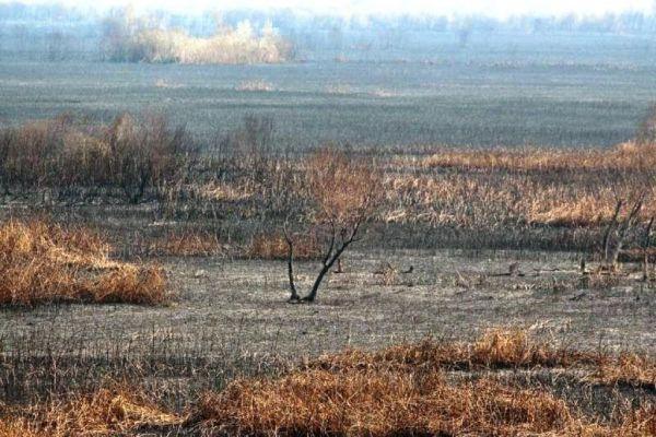 vlada fbih izdvojila 250 000 km za sanaciju posljedica pozara u hutovom blatu