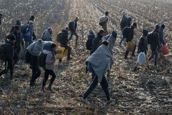 broj ilegalnih migranata u bih u prosloj godini sedam puta veci u odnosu na 2016 godinu
