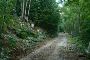 Šumar iz Gradiške osumnjičen da je oštetio javno preduzeće