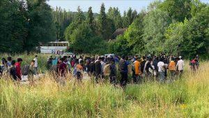 Izmješteno 187 migranata sa dvije lokacije na području Bihaća